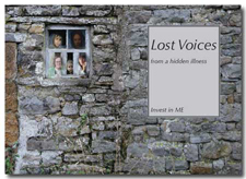 Lost Voices book cover